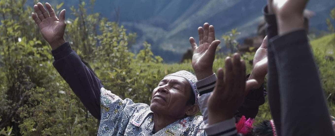 ayahuasca diets chamans